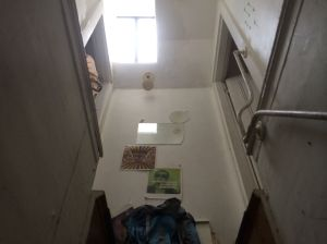Up Attic Stairs (with skylight)